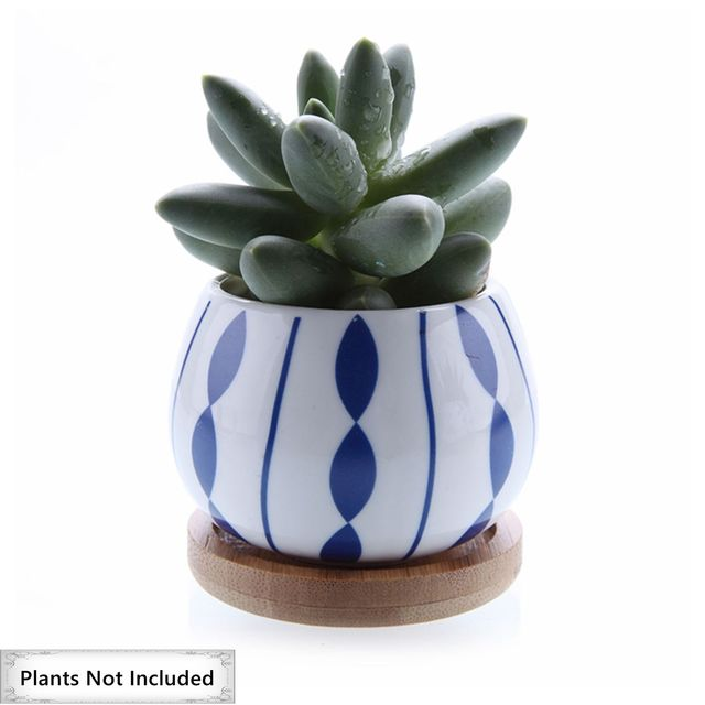 T4U 2.7 Inch Ceramic succulent Plant Pot Cactus Plant Pot Flower Pot Container Planter with Bamboo Tray Set of 3