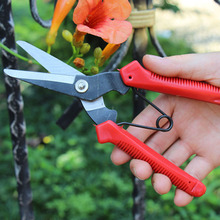 Garden Tools Scissors Gardening Stainless Steel Branch Pruner Cutter Sharp Bypass Pruning Shears Bonsai Grafting Tool