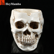 human skeleton skull online shopping-the world largest human, Skeleton