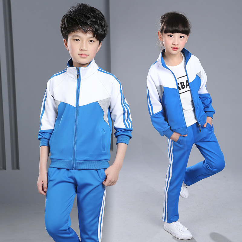 Children 39 s clothing 2019 new spring autumn long sleeved sports suit jacket pants 4 6 8 10 12 14 16 years old baby girl clothes in Clothing Sets from Mother amp Kids