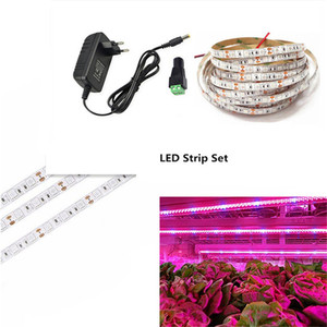 1-5m Waterproof LED Plant Grow Light Flexible Strip Set Red Blue 3:1 4:1 5:1 with Power Supply +Switch for Greenhouse Hydroponic(China)