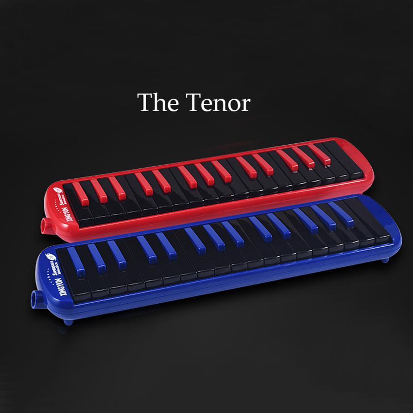 32 Key Melodica Instrument Red Blue Wind Musical Instruments Professional Melodica Keyboard Gift Kids Beginner Pianica with Case irin professional mini 17 key accordion educational keyboard musical instrument for both kids
