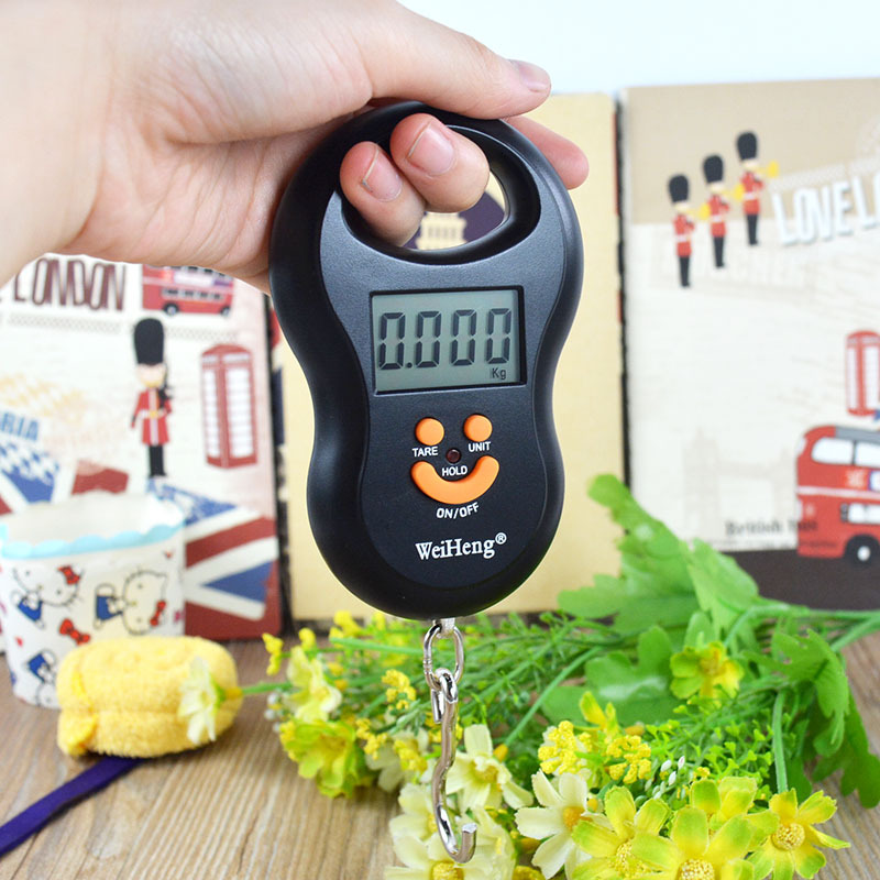 Portable 50kg Electronic Scale Hanging Fishing Luggage Digital Pocket Weight Hook Camping Hiking Outdoor Gear