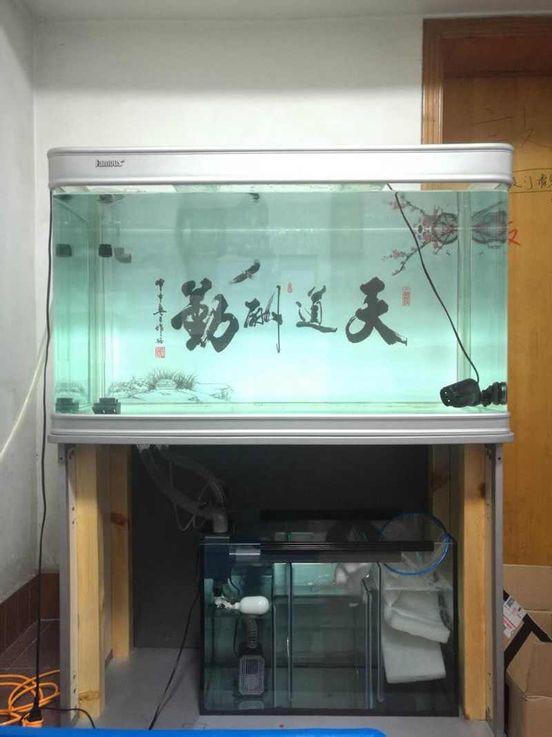 ใหม่ No เจาะรู-เจาะรูท่อกรองด้านล่างไม่จำเป็นต้องรู siphon ล้นสำหรับสด marine tropical ถังปลา