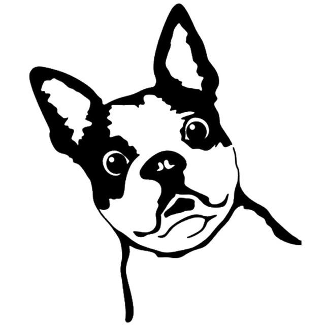 10 312cm french bull dog vinyl decal funny car window stickers bumper car styling decoration