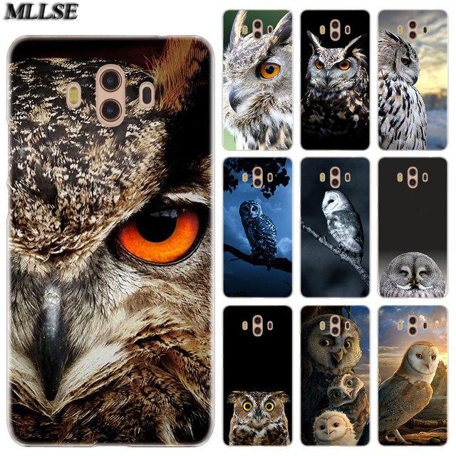 9400 Gambar Burung Elang Malam Gratis