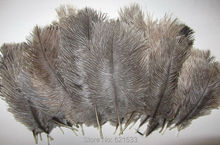 "100pcs/lot! The Nature Grey Brown colour Ostrich Feathers 6 8""15 20cm,the true colour Ostrich Feathers"