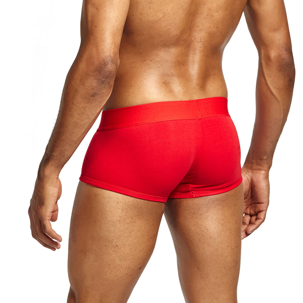 9820040ed36ecc Seeinner Brand Men Transparent Boxer Underwear Panties Cotton Male  Transparent Underpants Shorts Branded Pouch Boxer S759-1 ...