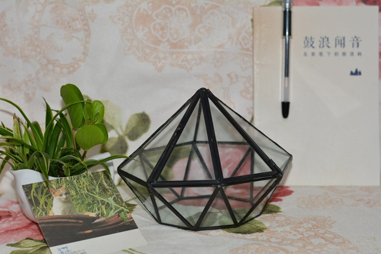 Diamond Geometric Polyhedron Glass Terrarium3