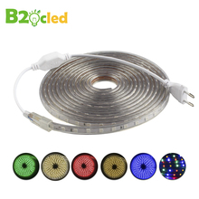B2OCLED AC 220V SMD 5050 Waterproof LED Strip Flexible Light 60 leds/M Rgb led Tape Warm White Green Yellow Blue EU Plug