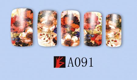 A091(1)