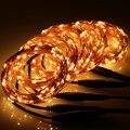 5 * pés 100 conectável ao ar livre estrelado luzes da corda de fio de cobre 500 + ( eua, Reino unido, Ue, Auplug )