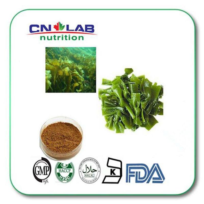 100% Natural Brown Fucus Vesiculosus Extract Fucoxanthin   ,Fucus Vesiculosus1000g 100% natural griffonia seed extract 20% 5 htp