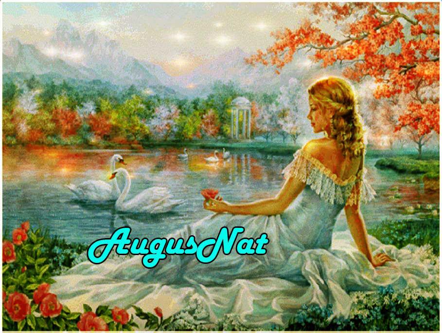 Mujeres diamante pintura elegante señora daimond bordado swans diamant pegatina cuentas pintura al óleo cuadro por número lienzo pintura grande