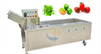 과일 야채 도구 과일 야채 깨끗한 야채 세탁기 과일 세탁기|vegetable washer|fruit washing machinefruit washer -