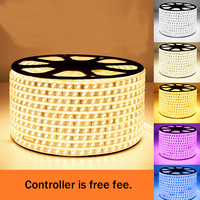 BSOD Led Strip Light AC220V Waterproof Led Tape Wahite Warm white Blue Purple +Led Controller Remote Control Indoor Outdoor