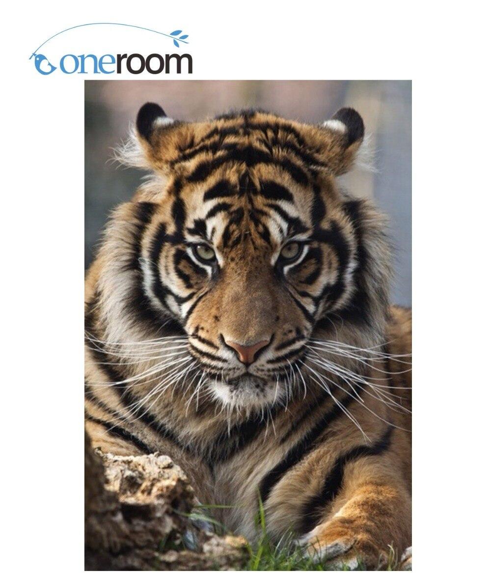2th Красота жизнь новые 3D поделки алмазов картина King Tiger Животные Алмазный крест вышивка картина из кристаллов Ремесло Хобби