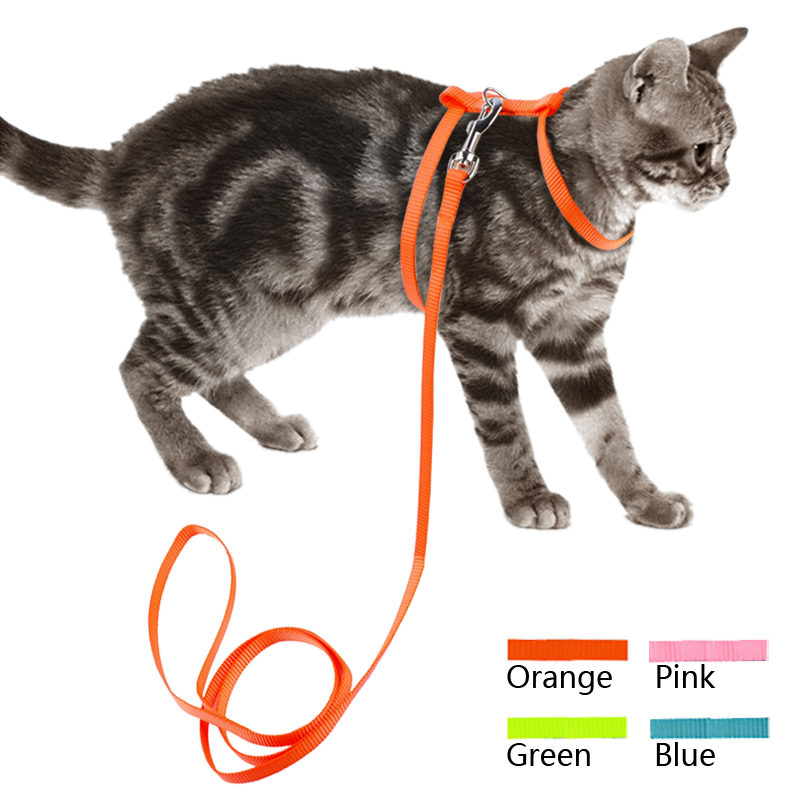 Nylon Cat Harness & Leash Set Pet Kitten Small Dogs Nylon Strap Belt Harnesses Various Colors