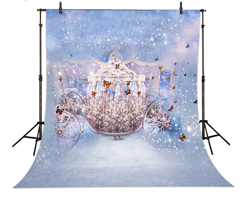 Cinderella Carriage Butterfly Backdrop Vinyl Cloth High
