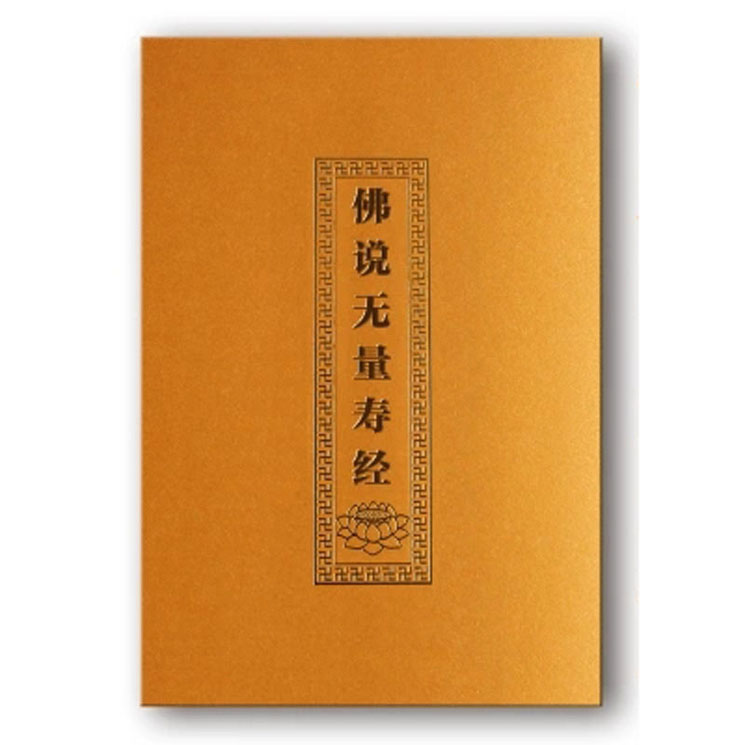 Buddha Speaks Infinite Life Sutra with pin yin / Buddhist books in Chinese Edition ds 11 china bronze gilded guanyin bodhisattva comfortable kwan yin buddha statue