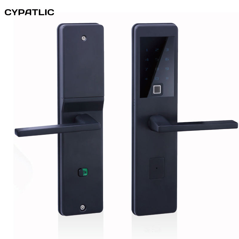 Numérisation d'empreintes digitales serrure intelligente clavier électronique Intelligent numéro serrure de porte biométrique serrure de porte