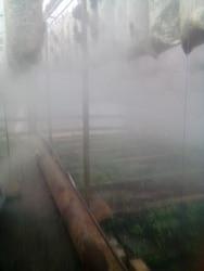 24v/2800- 4800ML/H /10 HeadsUltrasonic Mist Maker Fogger Humidifier Greenhouse Aeromist Hydroponics