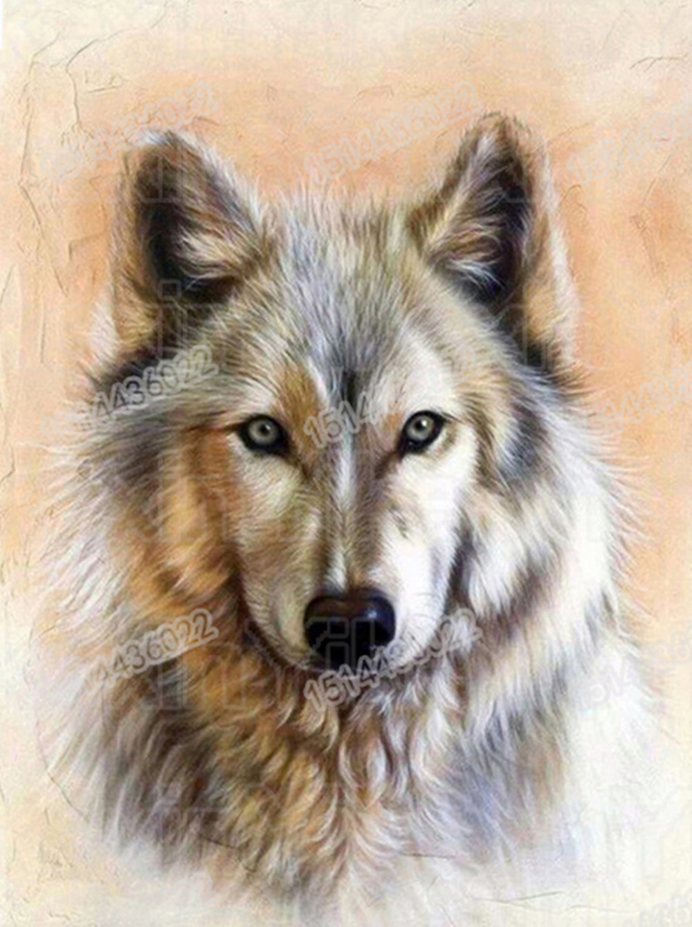 Full round diamond 5D DIY diamond embroidery wolf animal 3d diamond painting Cross Stitch Rhinestone 2019 home decoration