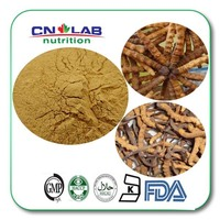 Free Shipping High Potency 1KG Cordyceps Sinensis Extract Powder Chinese Caterpillar Fungus Extract Powder Cordyceps Extract
