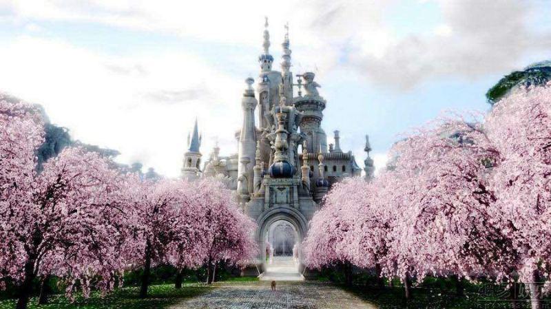 MEHOFOTO 450x300 cm fonds de photographie en vinyle mince pour Studio de photo/décors de château imprimés numériques j0127