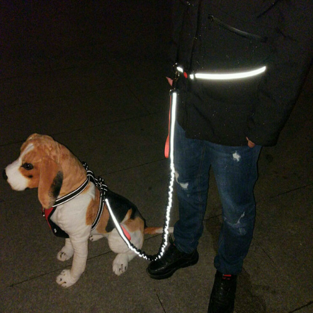 Adjustable Elastic Waist Dog Harness and Leash