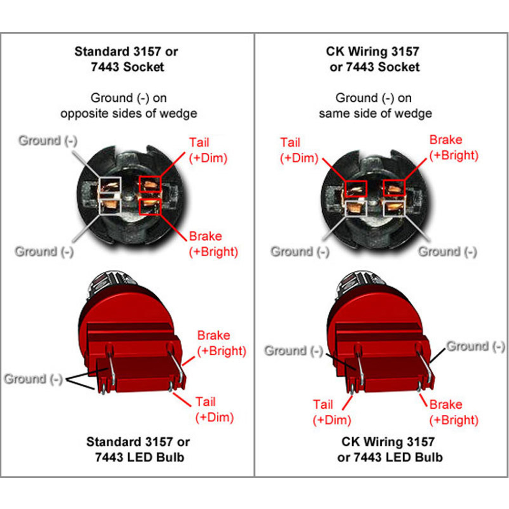 medium resolution of 3157 light bulb socket diagram 12v portable battery pack light