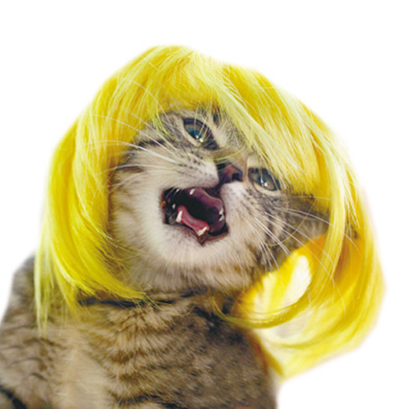 [mpk Cat Wigs] Yellow And Blue Cat Wigs, Pet Wig, Funny Cat Wig, Cat Costume