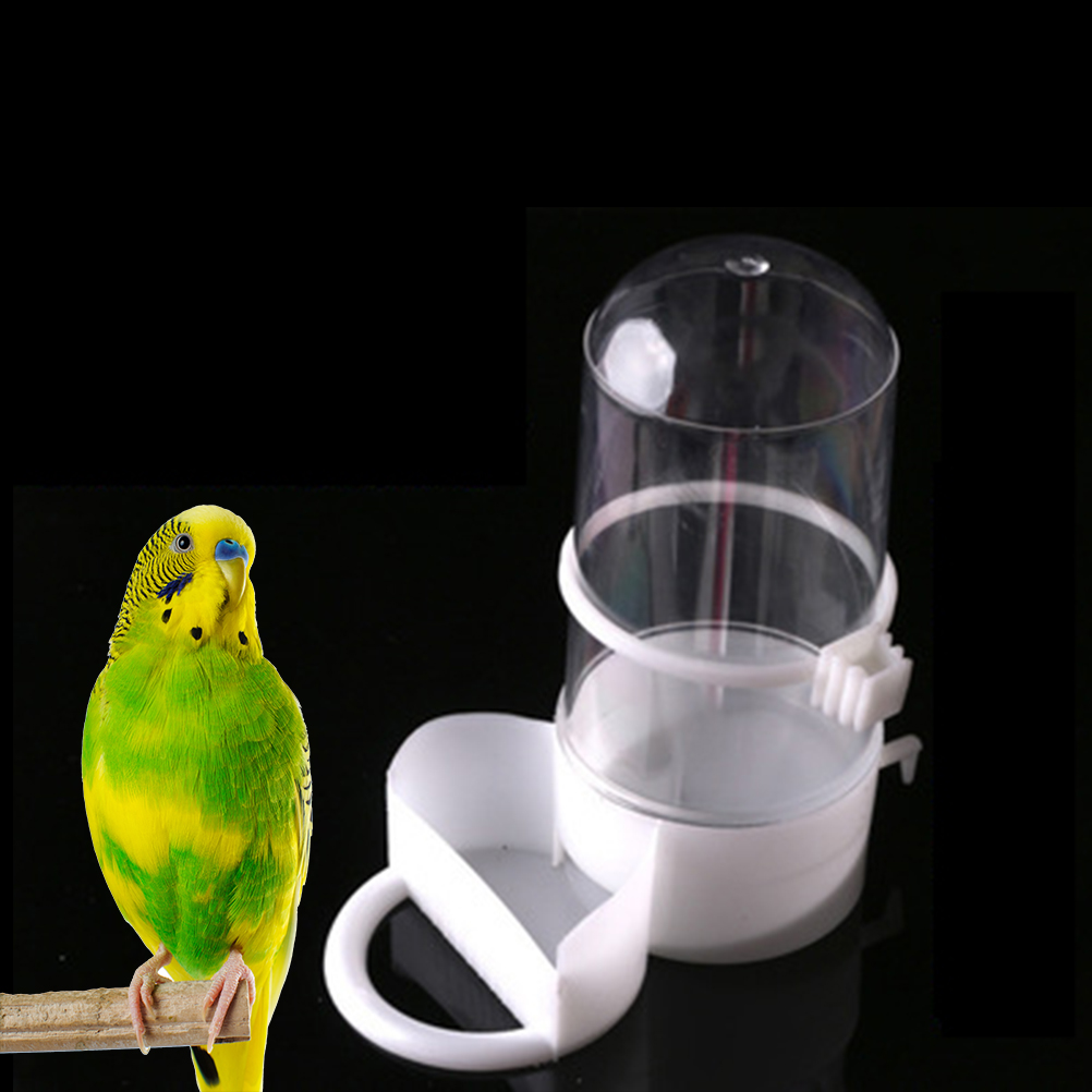 Burung Baru Hewan Peliharaan Peminum Pengumpan Otomatis Makanan Penyiram Klip Aviary Cage Burung Nuri Bayan Aliexpress