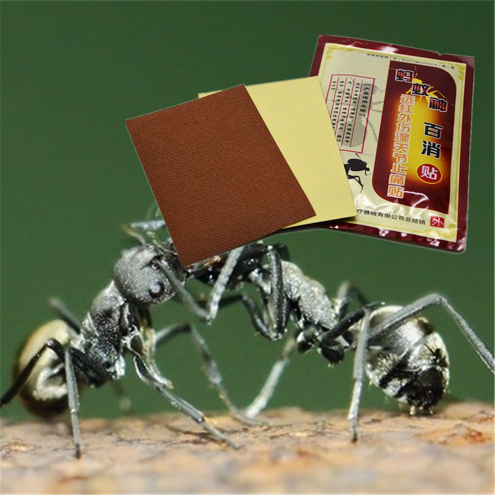 DISAAR Chinese medicines Ant venom Essential Oil patches Joint pain patch self heating Far infrared Neck Back Pain Patches