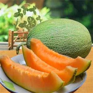 Produtos especiais! 20 pçs/saco Super Grande Doce mel-orvalho melão Hami melão bonsai de Frutas suco de Melão Jumbo Da Herança Suculenta