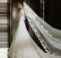 Wedding Bridal Veil Lace Appliques Veil Wedding Veil Accessory 2016