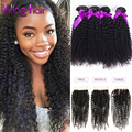 Rosa Hair Products With Closure Peruvian Kinky Curly Virgin Hair With Closure Ms Lula Hair Kinky Curly Virgin Hair with Closure