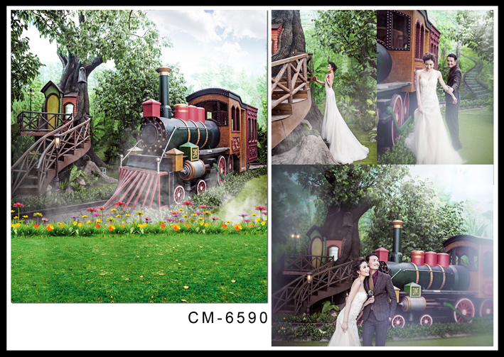 Retro Train Flowers Vintage Background Photography Green Tree Photography Backdrops for Photo Studio Custom Wedding Backdrops 200 300cm backgrounds for photo studio photography backdrops white green the open air terrace flowers tree for wedding