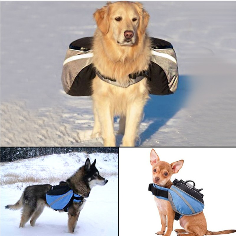 Compare Prices on Big Dog Carrier- Online Shopping/Buy Low Price ...