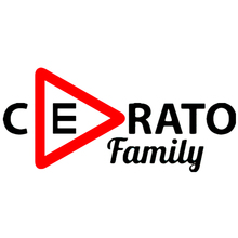 CS-958#48*21cm Cerato family funny car sticker vinyl decal silver/black for auto stickers styling decoration