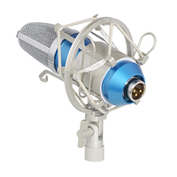 Professional Studio Recording Condenser Microphone With Shock Mount Holder Clip For Radio Gaming And Video Chat