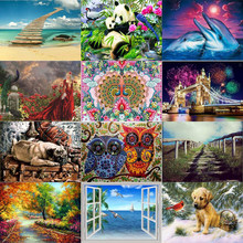 DIY Dolphin Owl bird Diamond Painting landscape dog Diamond Embroidery beach Mosaic Cross Stitch Square Drill Diamond Painting(China)
