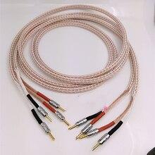 ペア 12TC ハイファイスピーカーケーブル高品質ピュア Occ スピーカーワイヤーとバナナジャック