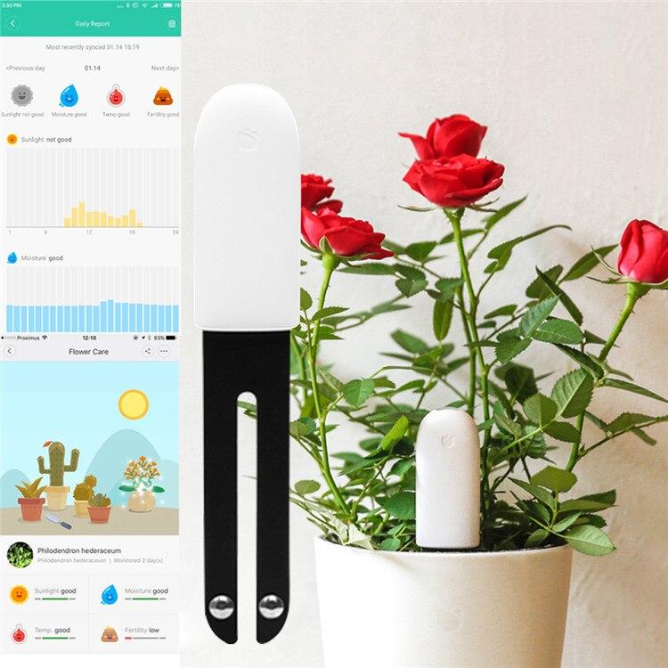 Xiao mi fleur Smart moniteur testeur capteur herbe fleur soin sol eau lumière plantes moniteur détection HHCC Version anglaise - 2