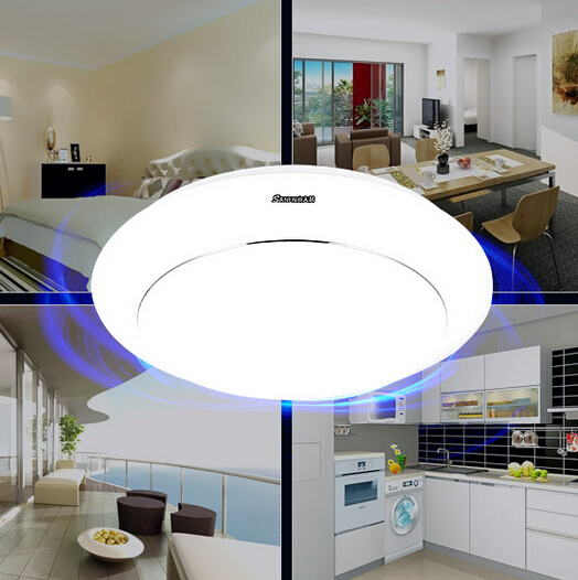ФОТО Free Shipping 10W Warm white/Cold white LED ceiling down Light For Indoor LED light Ceiling Lamp led kitchen light AC85-265V
