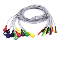 Holter Recorder ECG Patient Cable and Leads ECG 10 leadwires, used for Holter ECG Machine Medical ECG Cable