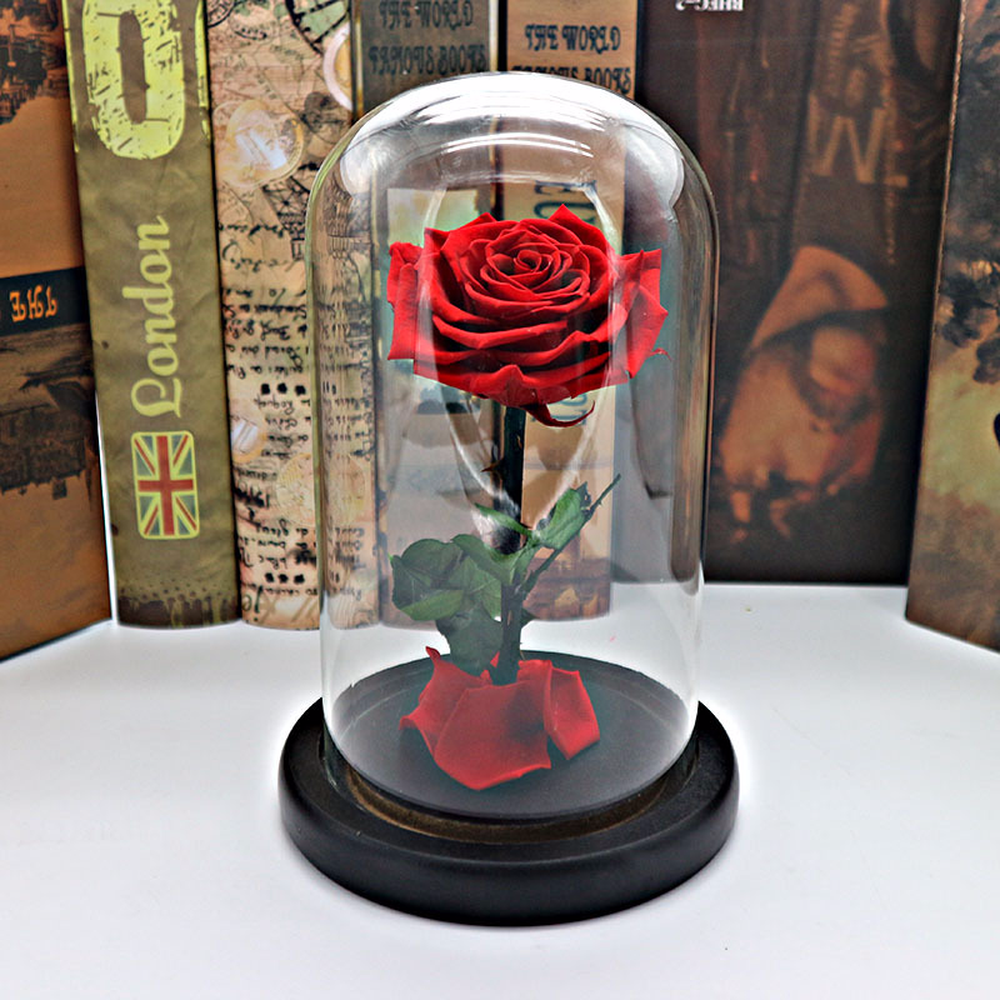 1Set Beauty and the Beast Red Rose in a Glass Dome on a Wooden Base for