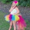 Fashion Candy Rainbow Pony Tutu Dress Unicorn Pony Girl Birthday Photo Prop Halloween Costume Baby Girls
