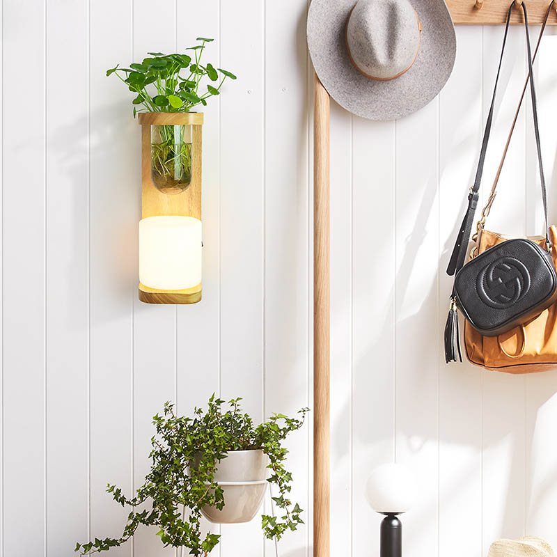 Nordic Hout Wandlamp met Hydrocultuur Succulenten Bloem Glas Pot voor Woonkamer Naast Light Blaker Wandlamp Muur Art - 5