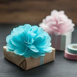 Diy 8 Inch 20 Cm Tissue Paper Pom Poms Decorative Paper Flowers